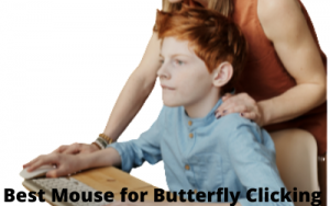 best mice for butterfly clicking